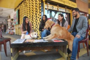 City's first dog-friendly café SOP, in Sector 32 Chandigarh its a first corner café in Sector 32D market, named Same Old Place (SOP) that is the brainchild of two youngsters.