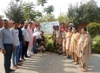 Tree plantation drives organized by MSGians
