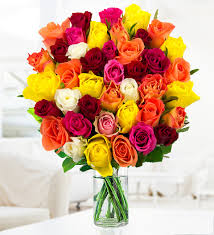 Importance of Flowers in The Beautiful city of Chandigarh