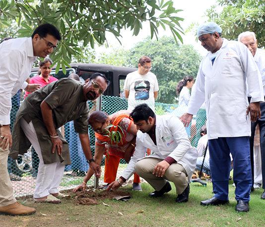 Knee replacement patients plant saplings