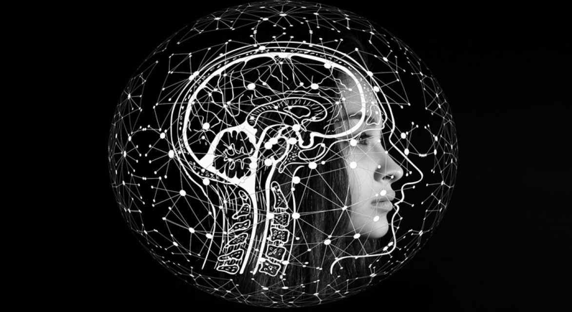 How our brain identifies faces
