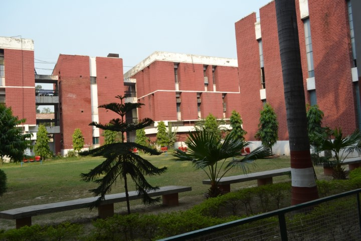 After criticism AMU extends tenure of sacked doctors