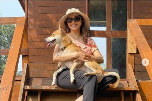 Madhuri Dixit flaunts her love for dogs on Instagram