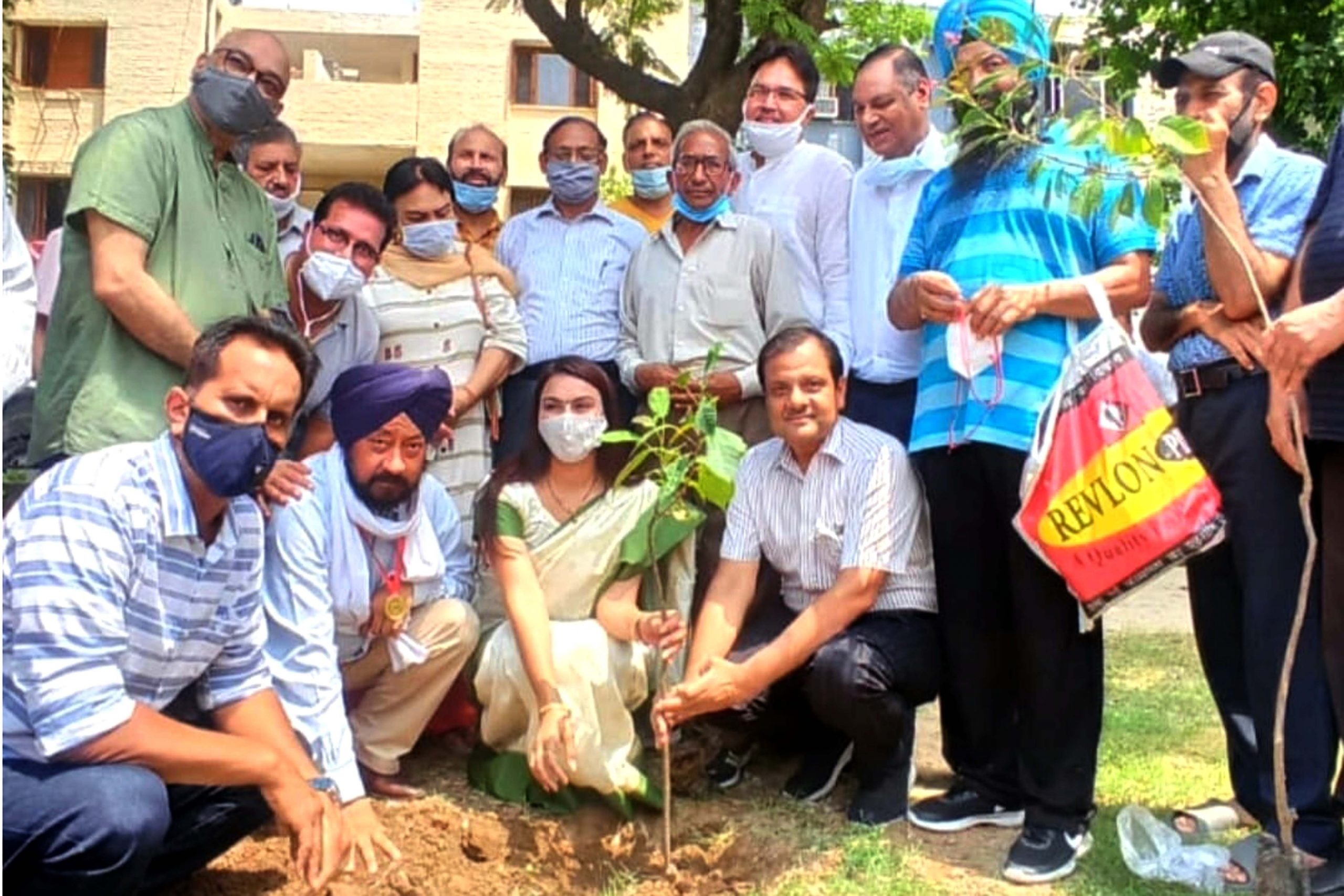 All the welfare bodies of Sector 38 West did plantation collectively planted many medicinal&fruitful&flowering plants