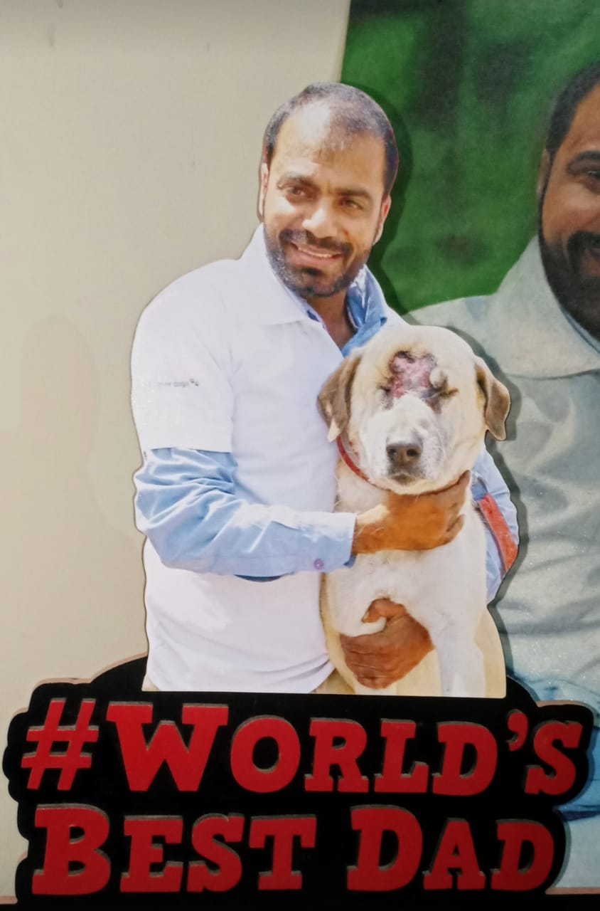 Dogs are neither speechless nor stray: Vikas Luthra